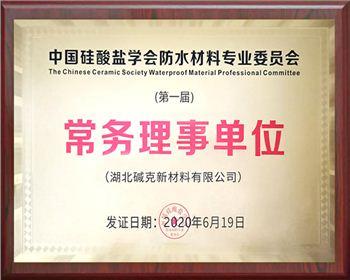 中国硅酸盐学会常务理事单位